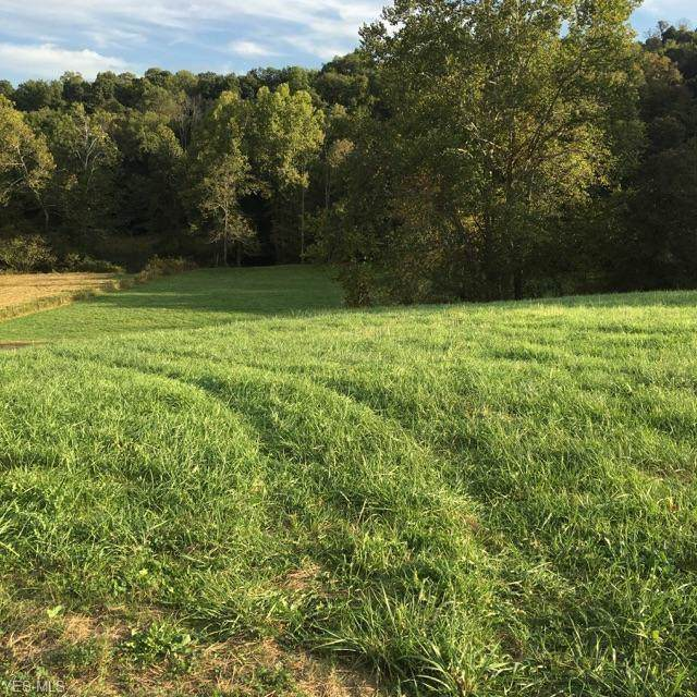 0 Green Valley Road, New Concord, OH 43762 (MLS #219034688) :: RE/MAX ONE