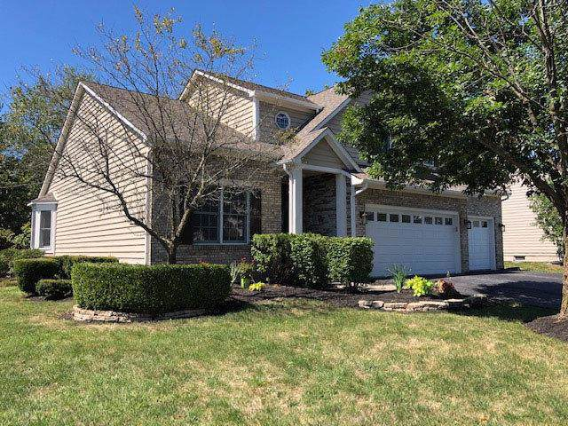 9214 Wayne Brown Drive, Powell, OH 43065 (MLS #219034910) :: The Raines Group