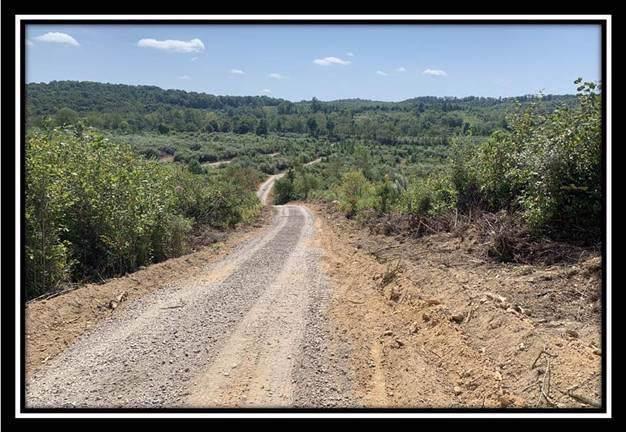 0 Old Shurtz Road - Photo 1