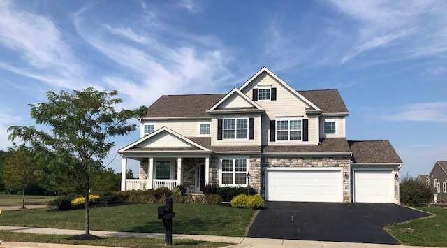 6137 Fox Hollow Drive, Galena, OH 43021 (MLS #219036312) :: Huston Home Team