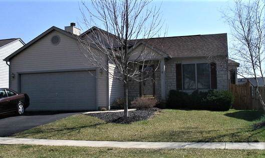 353 Meadow Ash Drive, Lewis Center, OH 43035 (MLS #219039167) :: The Clark Group @ ERA Real Solutions Realty