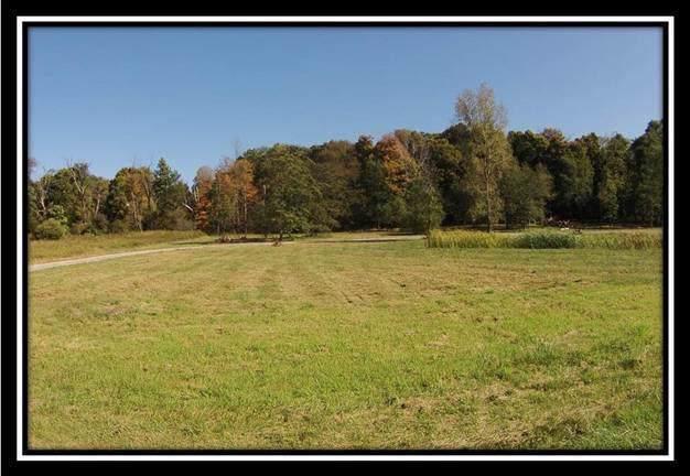 8100 Cattail Road NE, Pleasantville, OH 43148 (MLS #219039505) :: CARLETON REALTY