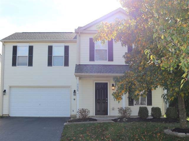 7529 Hemrich Drive, Canal Winchester, OH 43110 (MLS #220001608) :: CARLETON REALTY