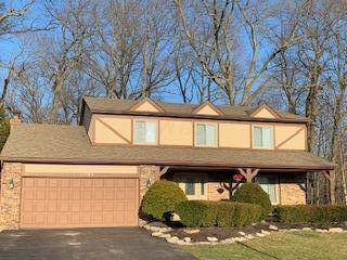 11284 Bridgeview Drive NW, Pickerington, OH 43147 (MLS #220004731) :: Huston Home Team