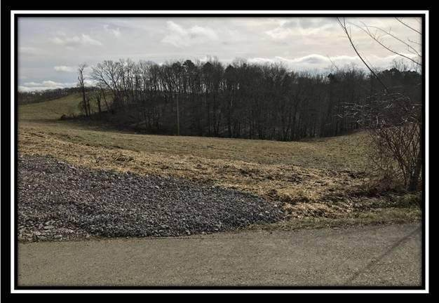 1850 Orpheus Road, Thurman, OH 45685 (MLS #220014932) :: The Holden Agency