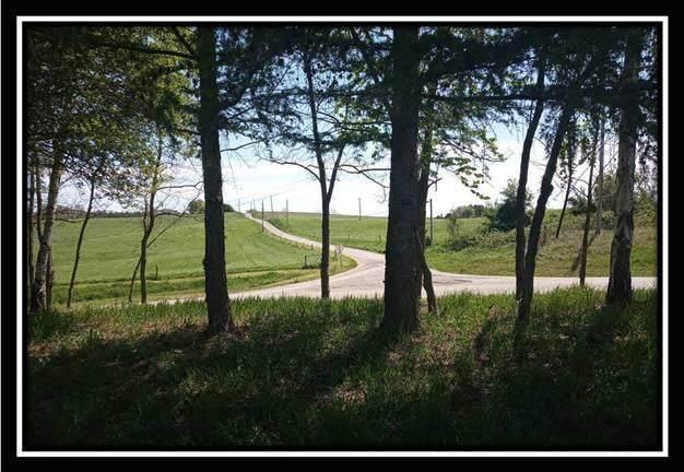 0 Mainsville Road W, Junction City, OH 43748 (MLS #220015976) :: Susanne Casey & Associates