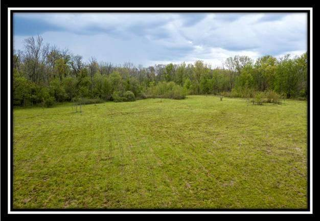 9995 Harding Highway E, Caledonia, OH 43314 (MLS #220016755) :: Shannon Grimm & Partners Team