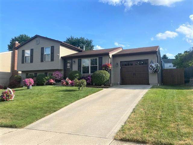 4471 Logwood Lane, Columbus, OH 43228 (MLS #220024107) :: Sam Miller Team