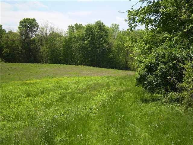 2000 Alexander Road, Galena, OH 43021 (MLS #220024142) :: RE/MAX ONE