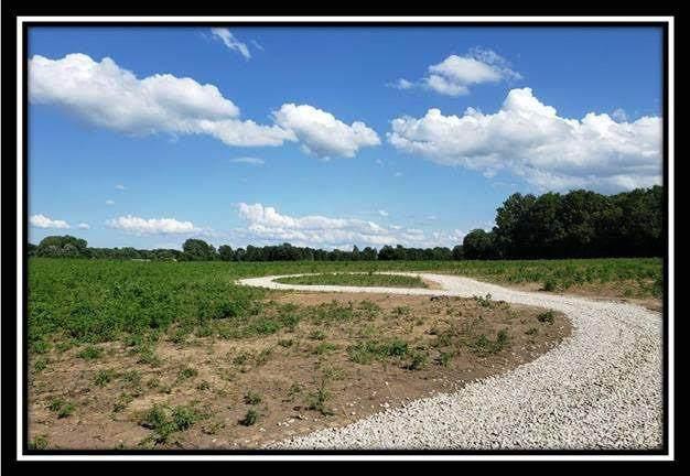 5650 Twp Road 191, Marengo, OH 43334 (MLS #220025806) :: The Holden Agency