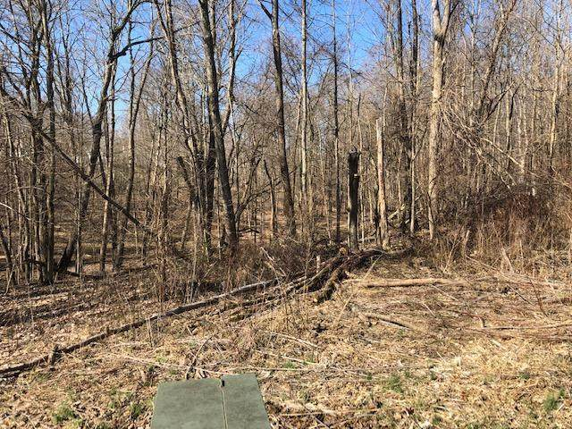 0 Apple Valley Drive Lot 68, Howard, OH 43028 (MLS #220026893) :: RE/MAX ONE