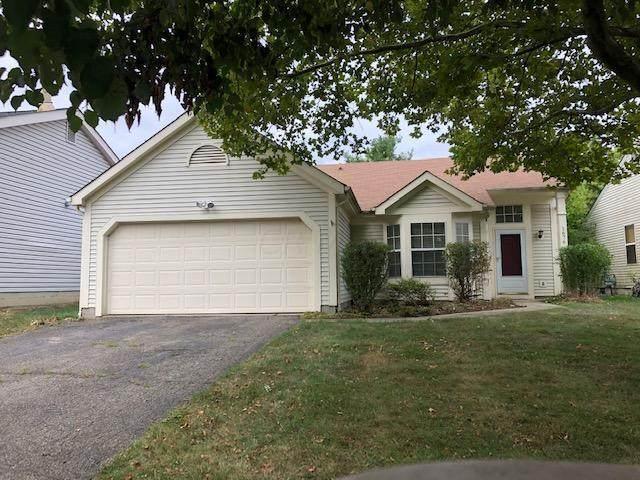 1676 Gardenstone Drive, Columbus, OH 43235 (MLS #220030498) :: Sam Miller Team