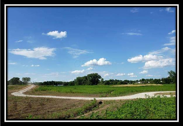 5662 Township Road 191, Marengo, OH 43334 (MLS #220033719) :: Sam Miller Team