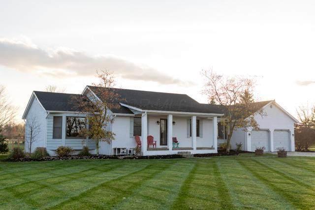 4513 Rensch Road, Grove City, OH 43123 (MLS #220041761) :: Susanne Casey & Associates