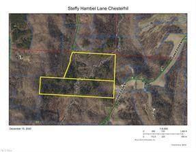 0 Steffy Hambel Lane, CHESTERHILL, OH 43728 (MLS #221002706) :: RE/MAX ONE