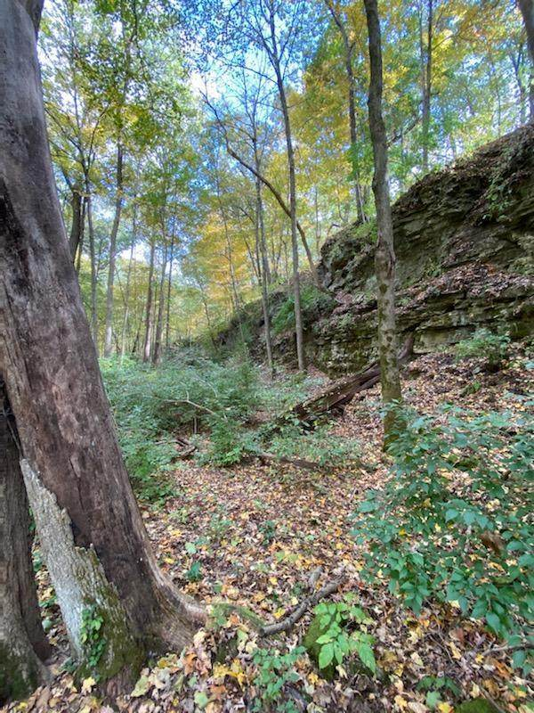 0 Deer Run Drive Lot 5, Dublin, OH 43017 (MLS #221005782) :: Berkshire Hathaway HomeServices Crager Tobin Real Estate