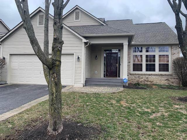 5500 Nash Place, Westerville, OH 43081 (MLS #221006070) :: Angel Oak Group