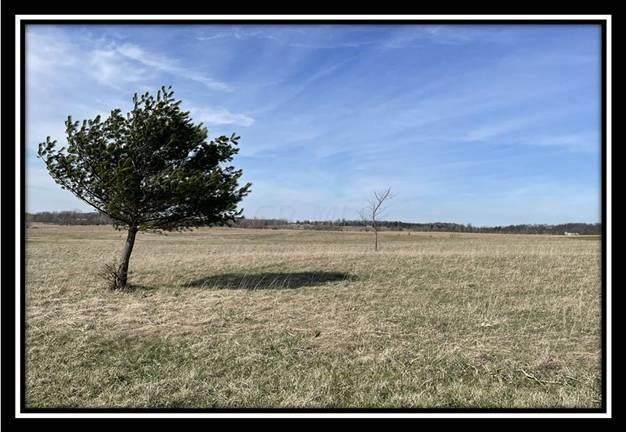 0 Twp Road 200, Bellefontaine, OH 43311 (MLS #221010147) :: Core Ohio Realty Advisors