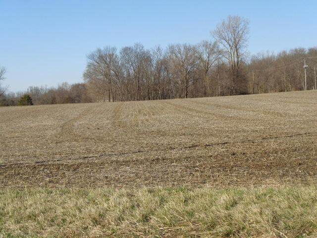 0 Township Rd. 144, Cardington, OH 43315 (MLS #221010213) :: Core Ohio Realty Advisors