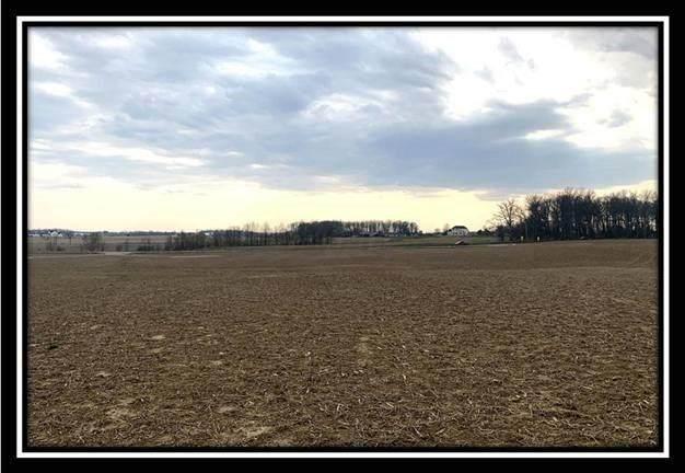 12290 St Rt 736 Road, Marysville, OH 43040 (MLS #221010729) :: Core Ohio Realty Advisors