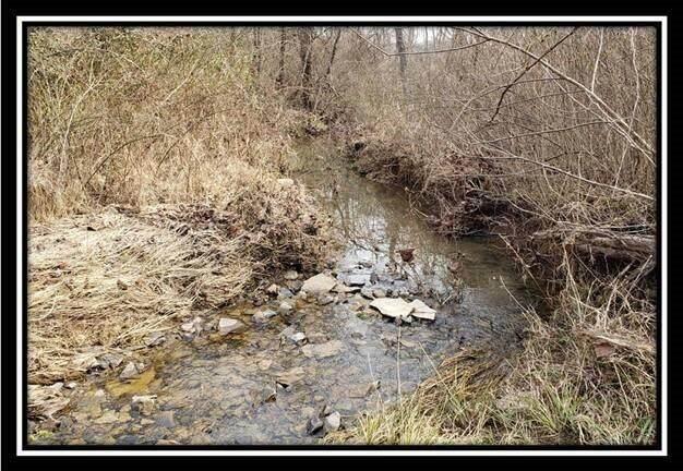 0 Edmundson Road, Vinton, OH 45686 (MLS #221010733) :: Core Ohio Realty Advisors