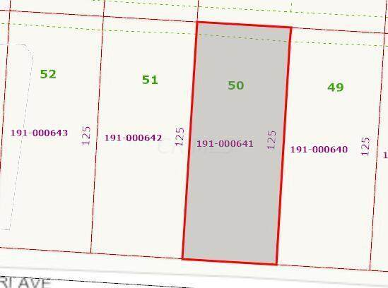 4 Lots E Missouri Avenue, Columbus, OH 43219 (MLS #221011218) :: Jamie Maze Real Estate Group