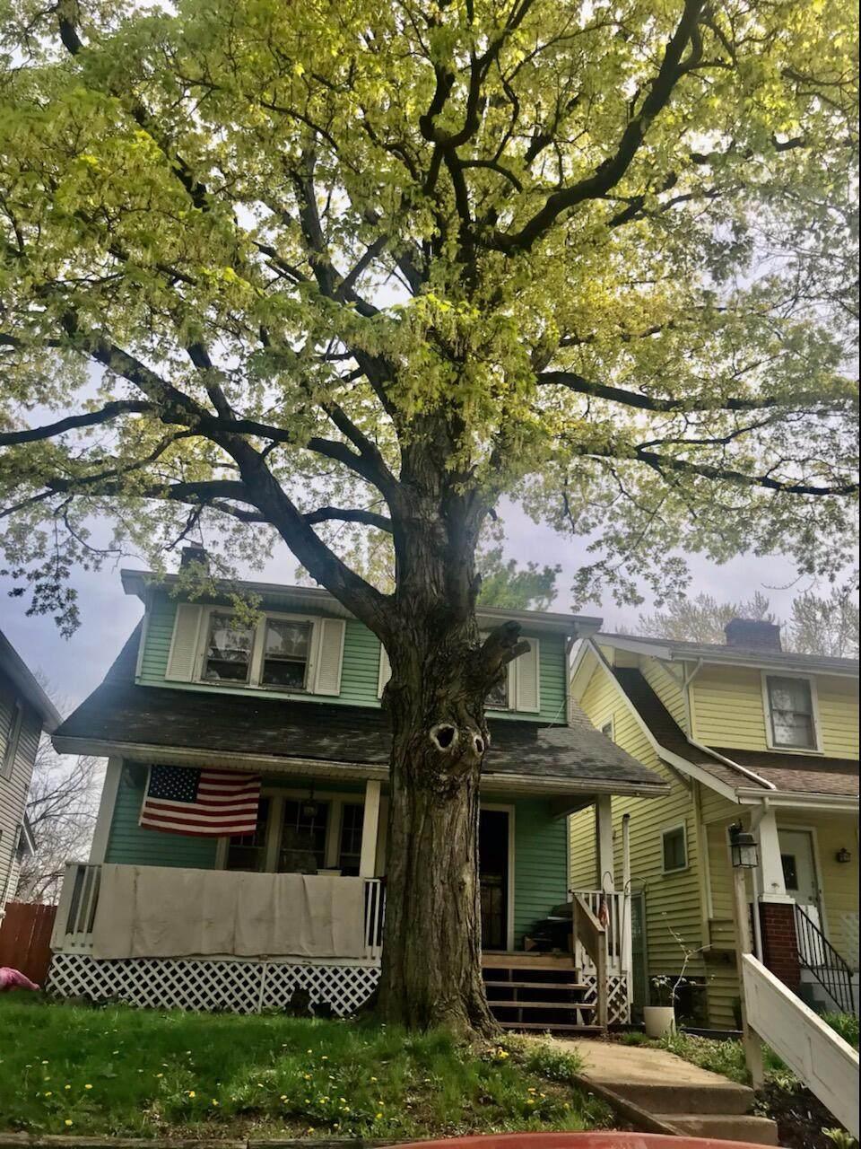 362 Burgess Avenue - Photo 1