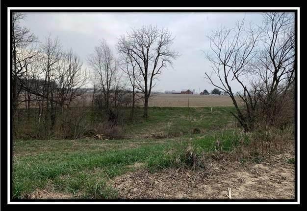 12220 St Rt 736, Marysville, OH 43040 (MLS #221011748) :: Core Ohio Realty Advisors