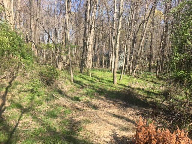 7326 State Route 19 Unit 7 Lot 185, Mount Gilead, OH 43338 (MLS #221013488) :: Shannon Grimm & Partners Team