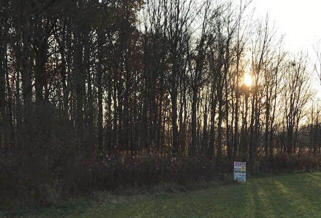 0 W Newmans Cardington Road, Prospect, OH 43342 (MLS #221017980) :: Ackermann Team