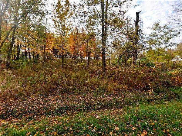 0 King Avenue SW, Pataskala, OH 43062 (MLS #221020331) :: ERA Real Solutions Realty