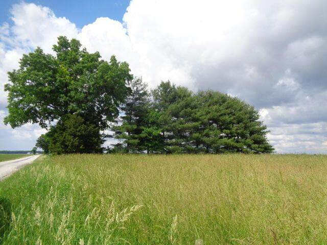 0 County Road 28, Cardington, OH 43315 (MLS #221020556) :: Shannon Grimm & Partners Team