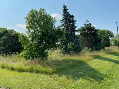 28122 State Route 739, Raymond, OH 43067 (MLS #221026367) :: LifePoint Real Estate