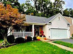 5629 Eagle Harbor Drive, Westerville, OH 43081 (MLS #221041136) :: Jamie Maze Real Estate Group