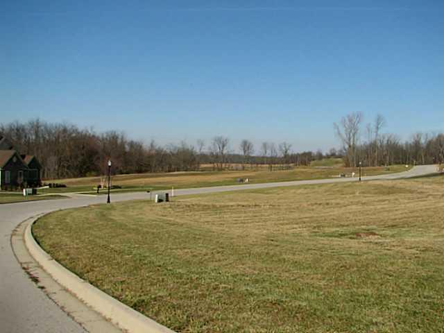 373 Buena Vista Drive Lot 3, Johnstown, OH 43031 (MLS #213002108) :: Angel Oak Group