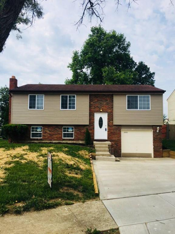 5995 Cork County Drive, Galloway, OH 43119 (MLS #218019462) :: Shannon Grimm & Partners
