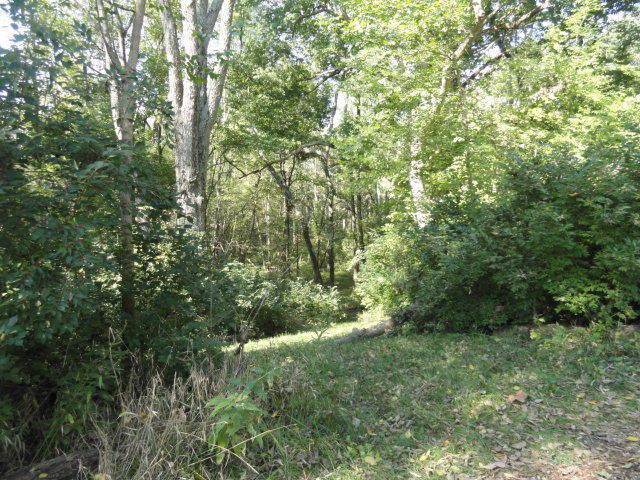 13032 Wycliffe Drive Lot 10, Plain City, OH 43064 (MLS #219040189) :: Core Ohio Realty Advisors