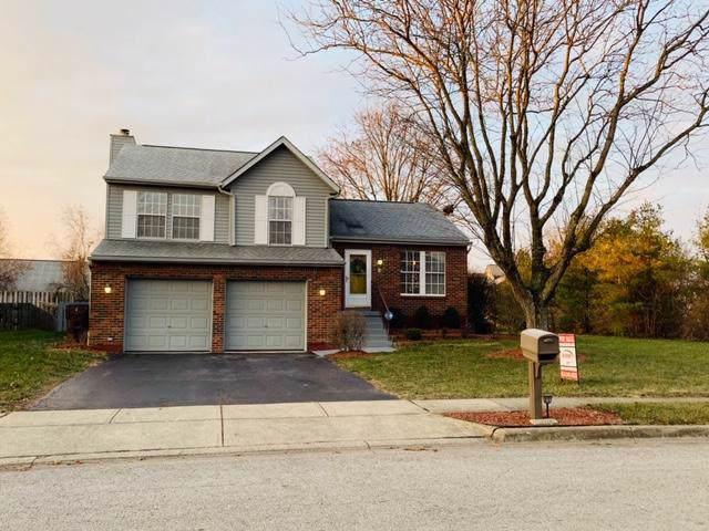 555 Courtland Lane, Pickerington, OH 43147 (MLS #219044345) :: Susanne Casey & Associates