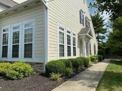 1002 Santana Street, Columbus, OH 43235 (MLS #220022497) :: BuySellOhio.com