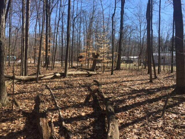 7326 State Route 19 Unit 5 Lots 66 , Mount Gilead, OH 43338 (MLS #221005667) :: The Holden Agency