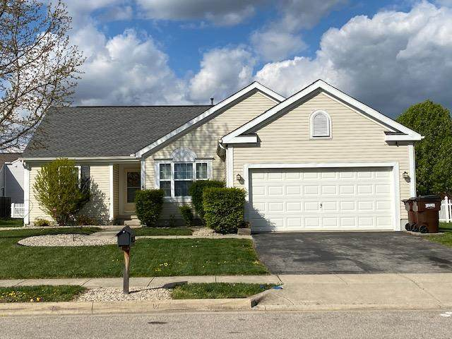 230 Sycamore Drive, Circleville, OH 43113 (MLS #221010855) :: LifePoint Real Estate