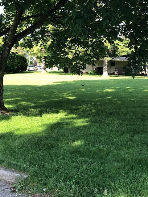 0 Atwater Avenue, Circleville, OH 43113 (MLS #219004566) :: The Clark Group @ ERA Real Solutions Realty