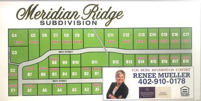 3903 88TH STREET, COLUMBUS, NE 68601 (MLS #1500299) :: Berkshire Hathaway HomeServices Premier Real Estate
