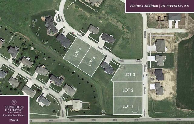 507 Redbud Drive, HUMPHREY, NE 68642 (MLS #1900174) :: Berkshire Hathaway HomeServices Premier Real Estate