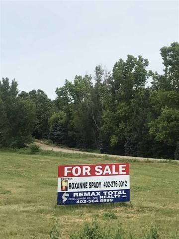 2302 55TH STREET, COLUMBUS, NE 68601 (MLS #1900384) :: Berkshire Hathaway HomeServices Premier Real Estate