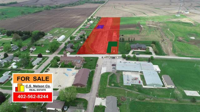 0000 Novak Street, PLATTE CENTER, NE 68653 (MLS #1800380) :: kwELITE