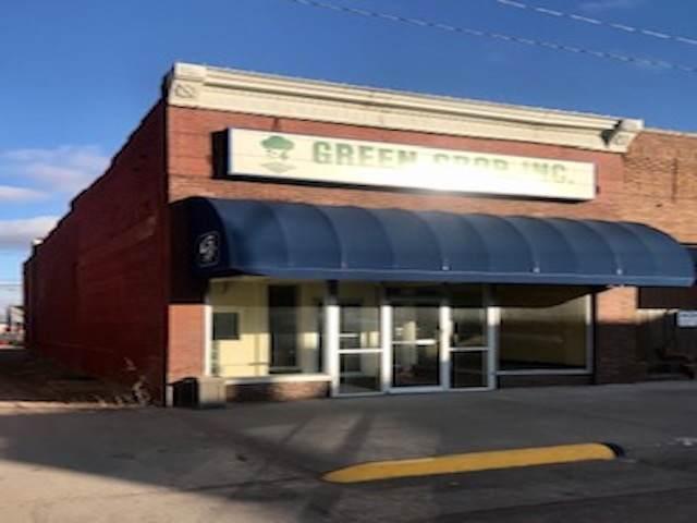127 S 4TH STREET, ALBION, NE 68620 (MLS #2020056) :: kwELITE