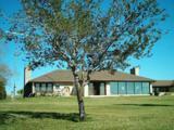 24509 La Ponderosa Drive - Photo 1