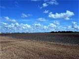 0000 Buddy Ganem (Fm 3239) 8.698 Acres - Photo 11