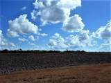 0000 Buddy Ganem (Fm 3239) 8.698 Acres - Photo 5